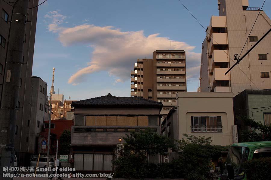 P6210674_japanese_house