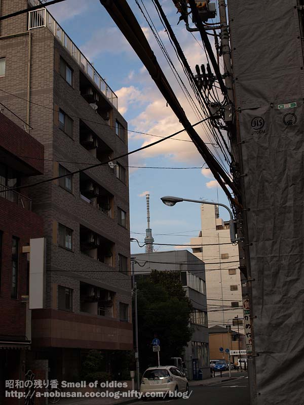 P6210759_koujigennba