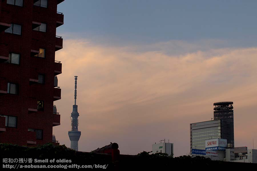 P7150858_sumidagawa_sunset