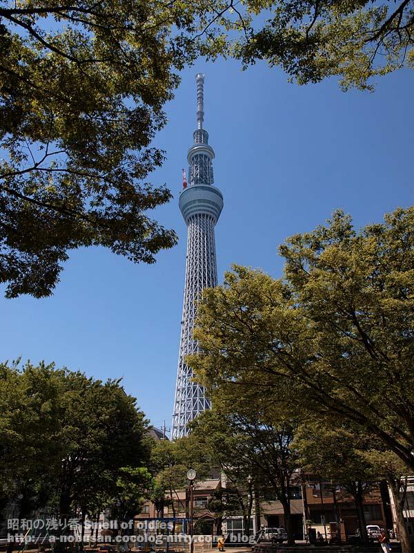P7160670_tokyo_sky_tree_park