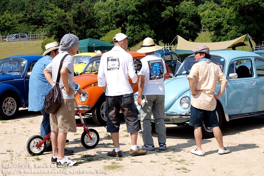 2010_p8010715_vw_owners