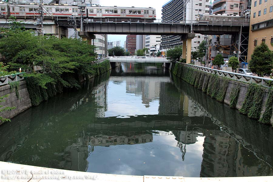 P8020245_ikegai_line