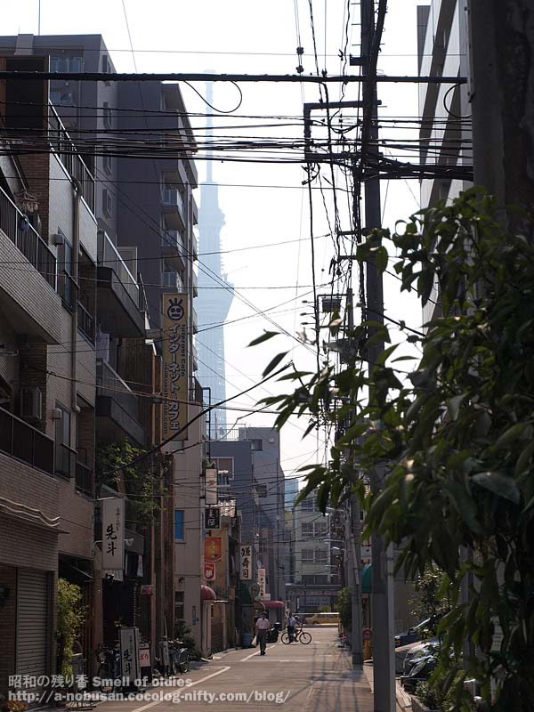 P8110236_nishiasakusa_morning