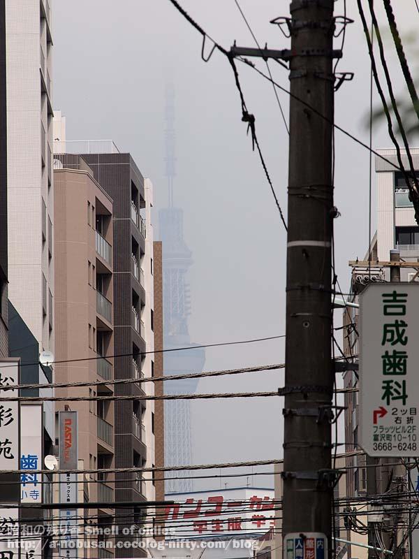 P8230117_kanko_gakuseifuku