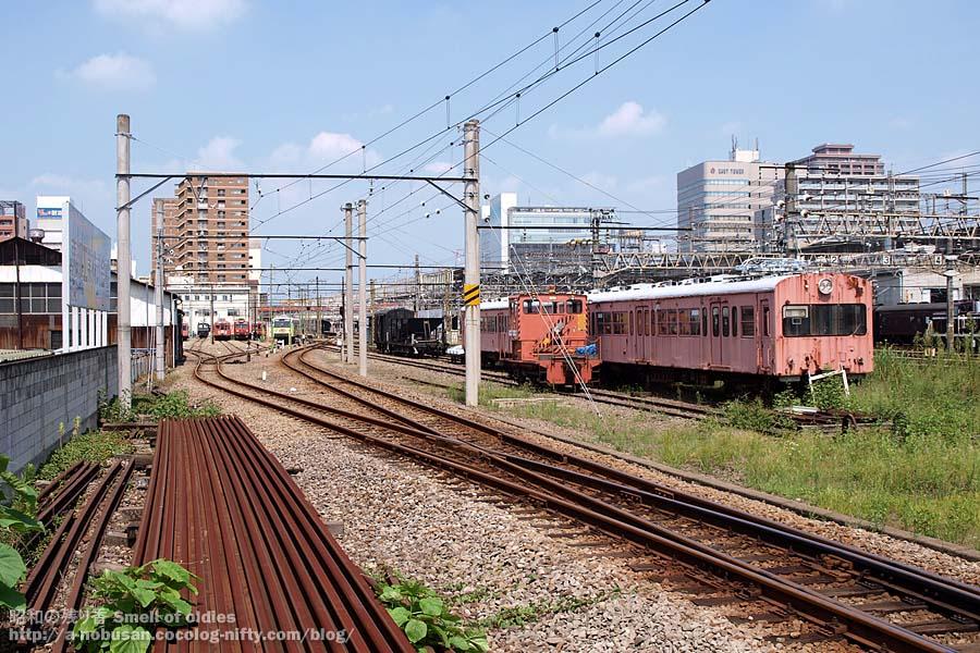 P8290030_jyoshin