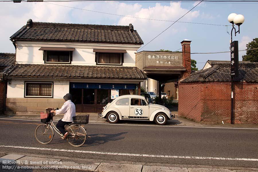 P9100094_koga_aoki_syuzo_2