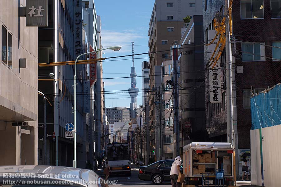 P9220441_fall_tokyo_sky_tree