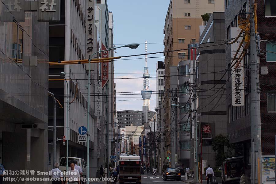 P9220542_white_tokyo_sky_tree
