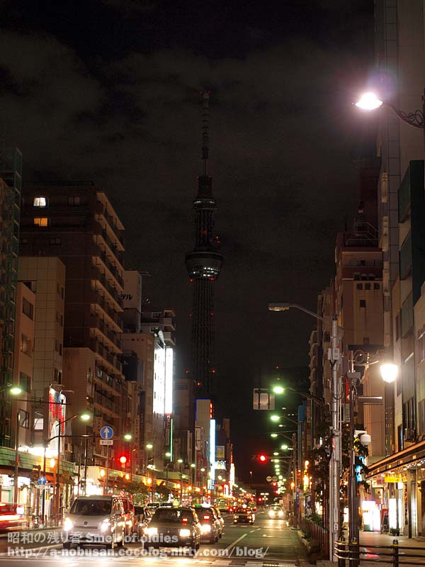 Pa030461_asakusa_night_sky_tree