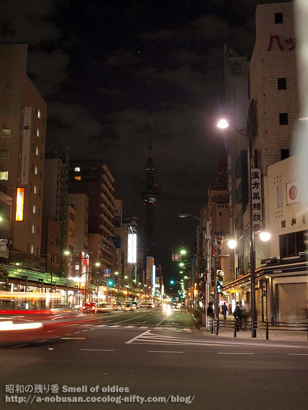 Pa030466_night_tokyo_sky_tree