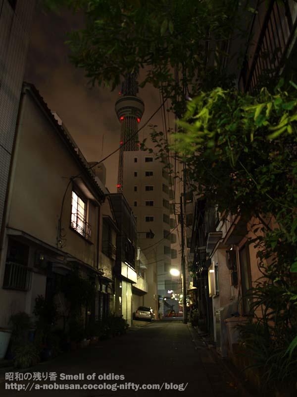 Pa060422_shitamachi_sky_tree