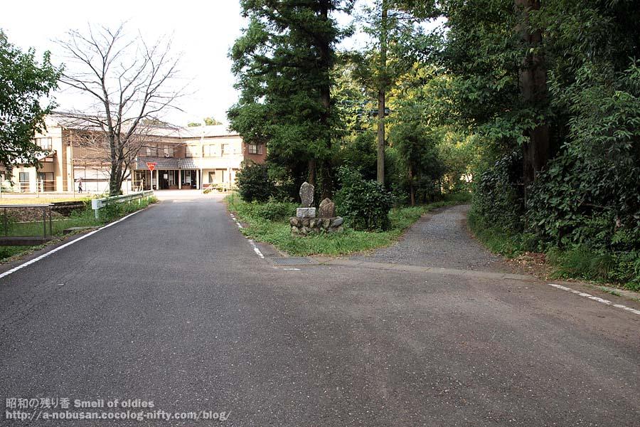 Pa080216_haisenato