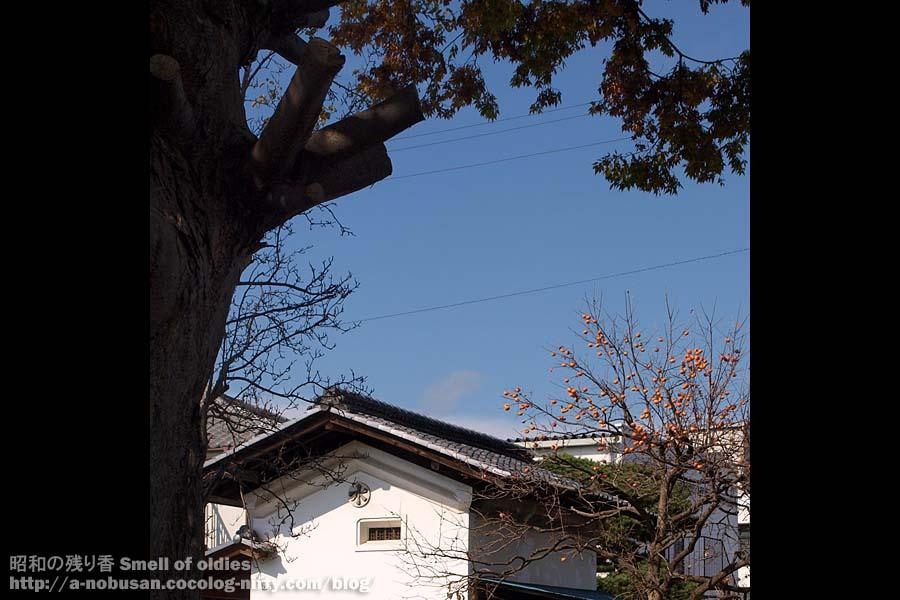 Pa240490_kaki_kura