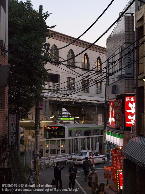 Pa270015_mejiro_yamanotesen