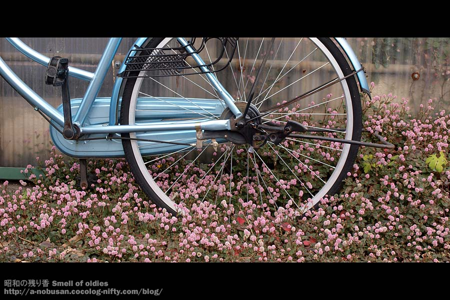 Pb050235_bike_and_flower