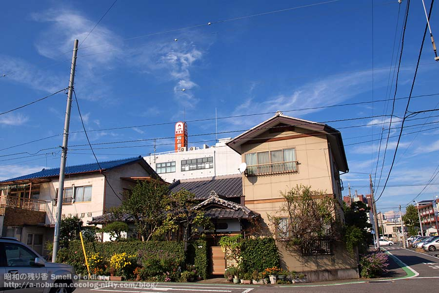Pb120019_bluesky_and_house