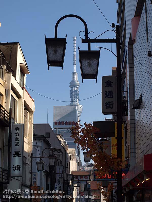 Pb230332_syokutsu_dori