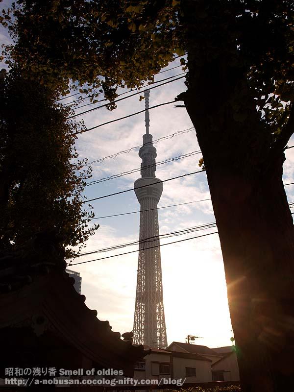 Pb230266_jinjya_tokyo_sky_tree