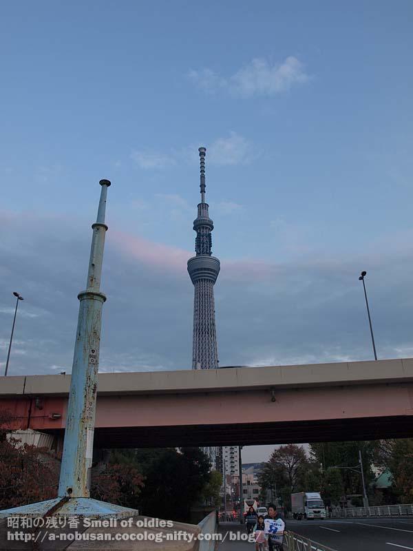 Pb230691_kototoi_bashi_sunset