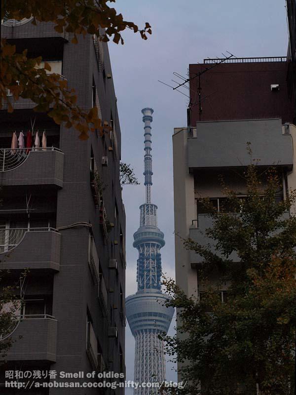 Pb230736_strip_tokyo_sky_tree