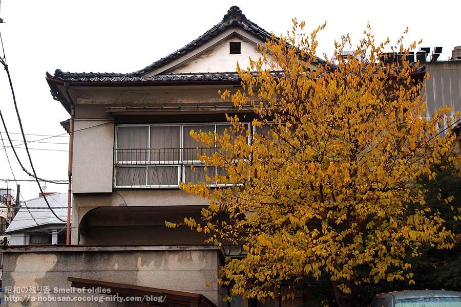 Pc030061_maebashi_geiko_kumiai