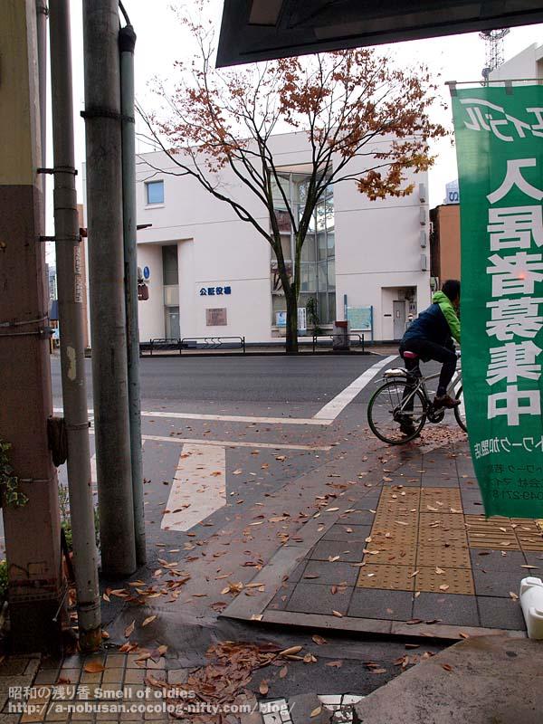 Pc030254_koshoyakuba