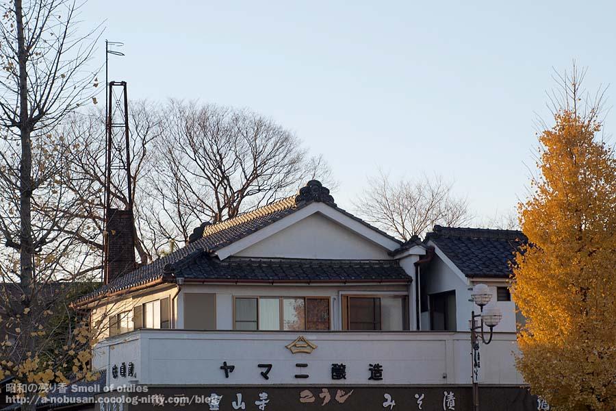 Pc110578_yamani_jyozo