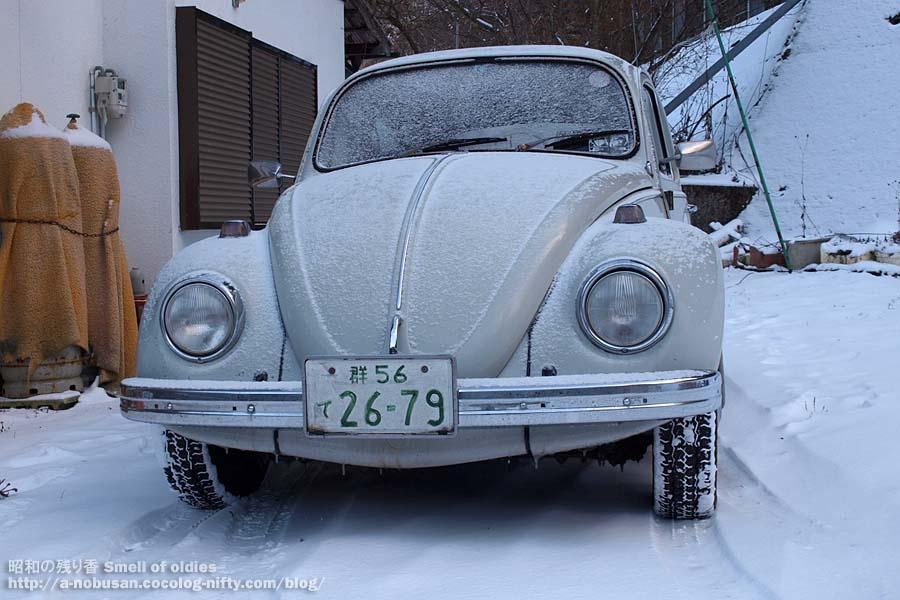 Pc260298_snowy_my_69