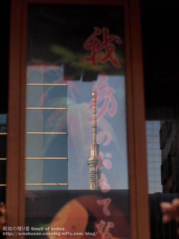 Pc290124_sky_tree_japan