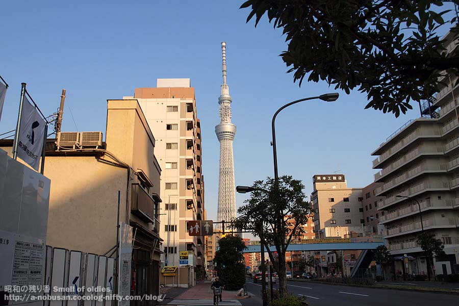 Pc290432_kiyosumidori