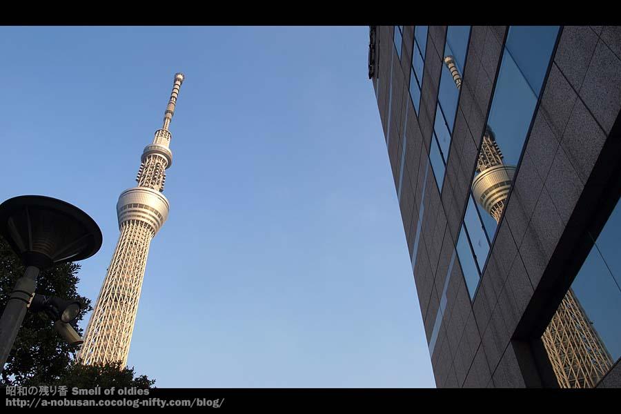 Pc290614_reflection_sky_tree