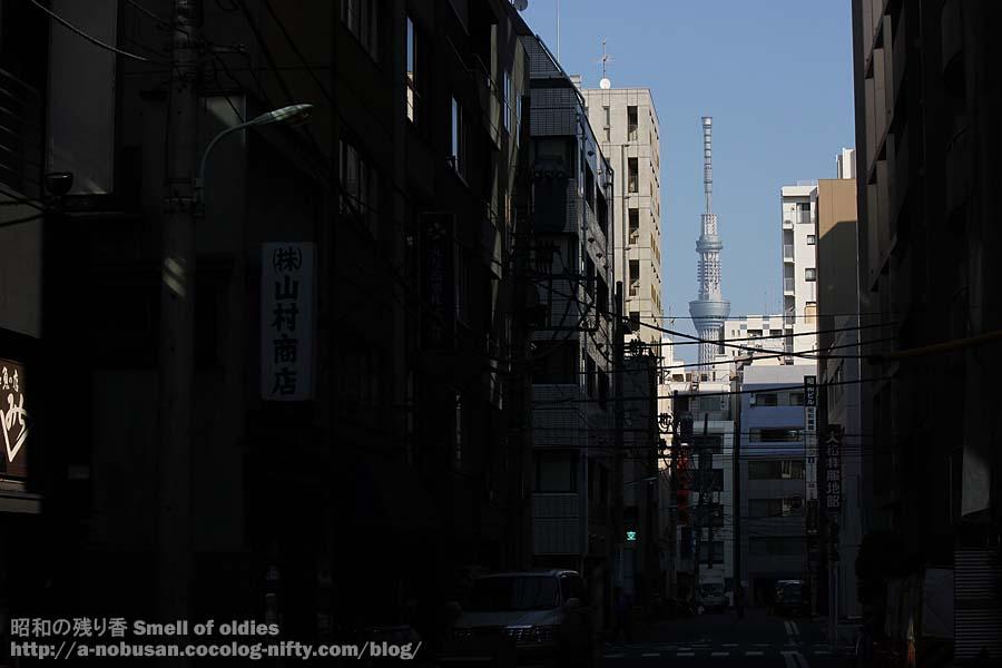 Img_1556_yamamurashoten_sky_tre
