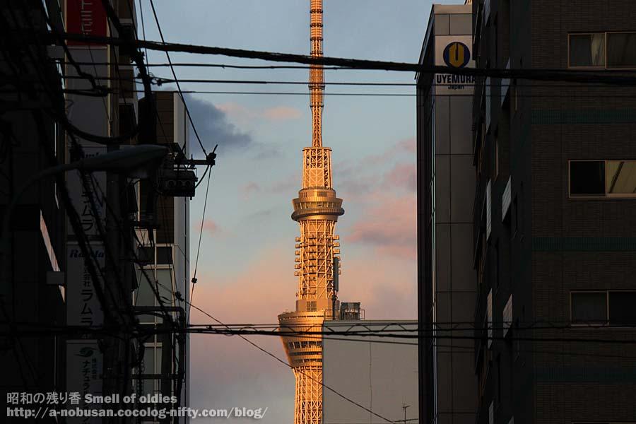 Img_1667_orange_tokyo_sky_tree