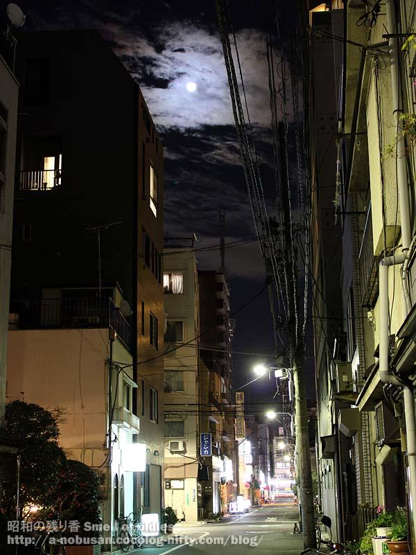 Img_4841_moon_and_sky_tree