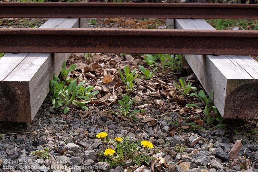 2011p5150522_narrow_rail