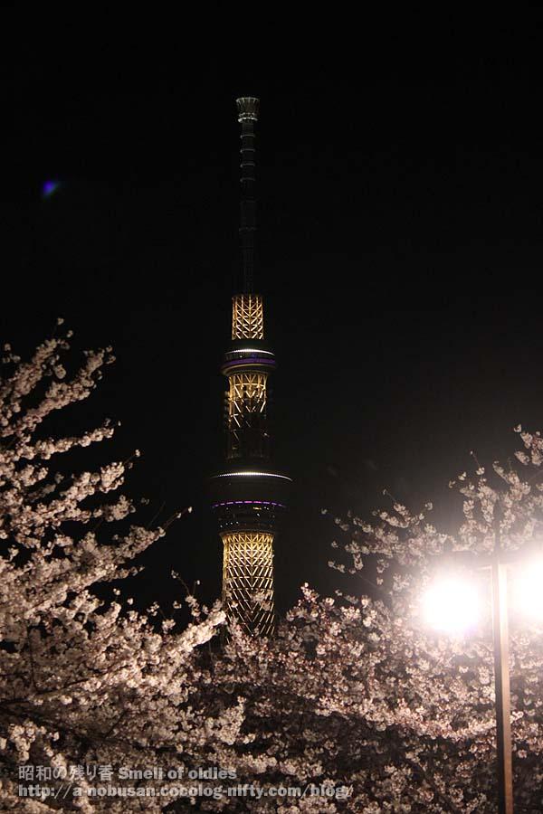 Img_3935_kuramae_sky_tree