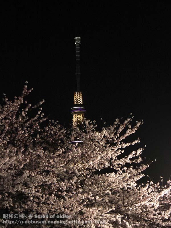 Img_3949_sakura_sky_tree