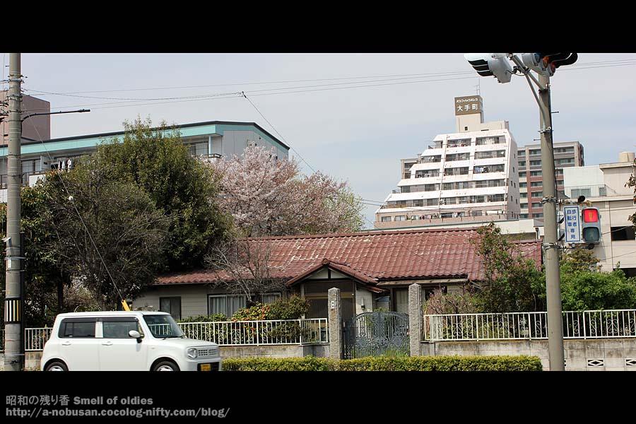 Img_6239_sakura_maebashi