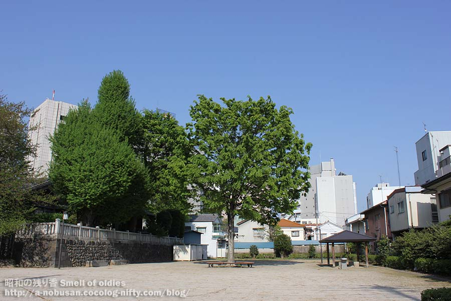 Img_2184_green_hachimansama