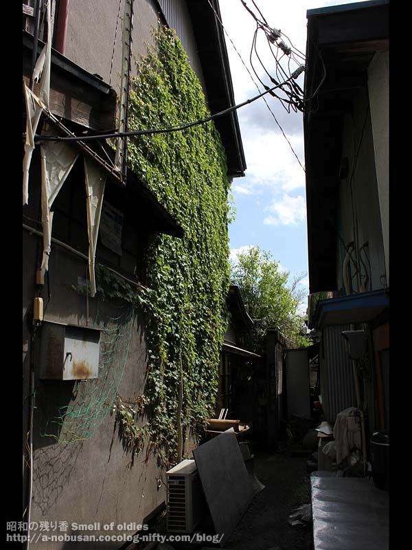 Img_3826_shinkamean_shiten_waki