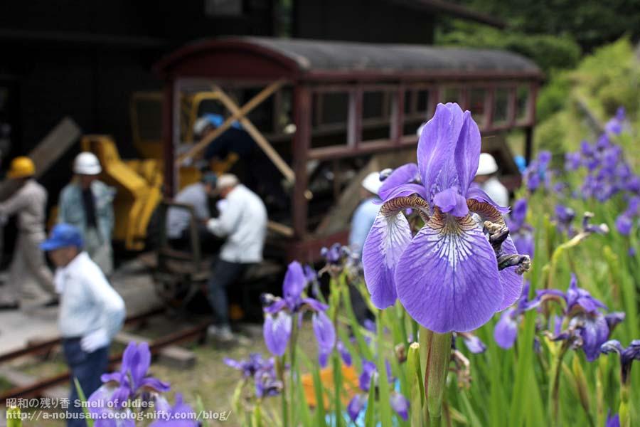 Img_6458_flower_2