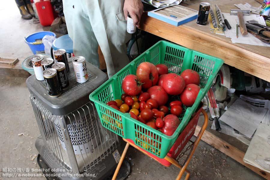 Img_0177_tomato