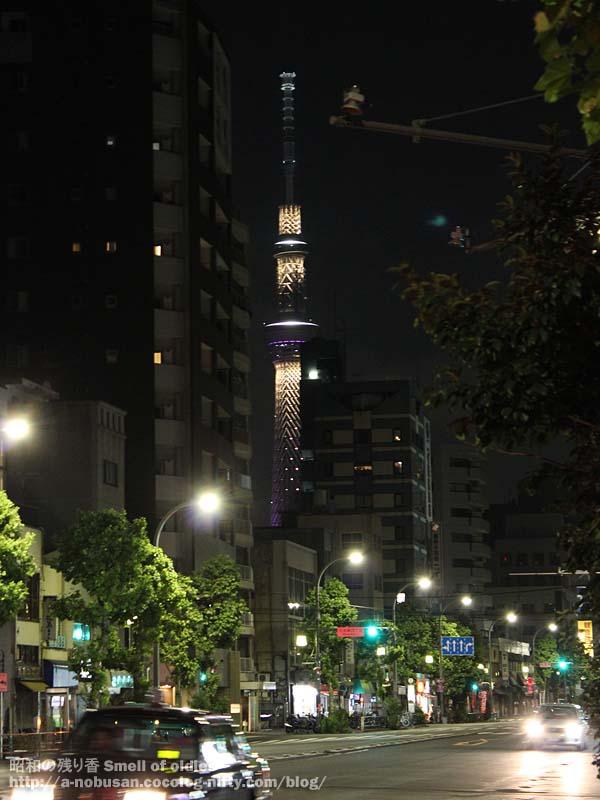 20120828img_0547_ueno_night