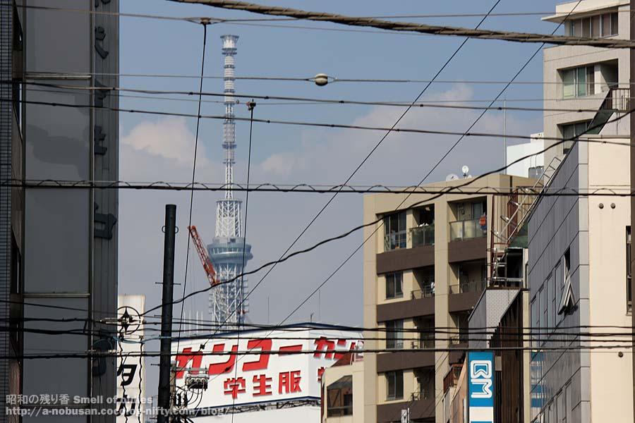 20120830img_0210_kanko_gakusei