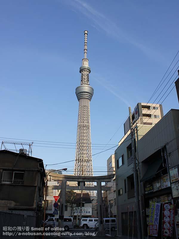 20120830img_0663_ushijima_jinjy