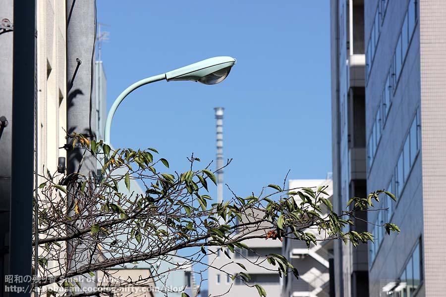 Img_0168_20121001_sky_tree