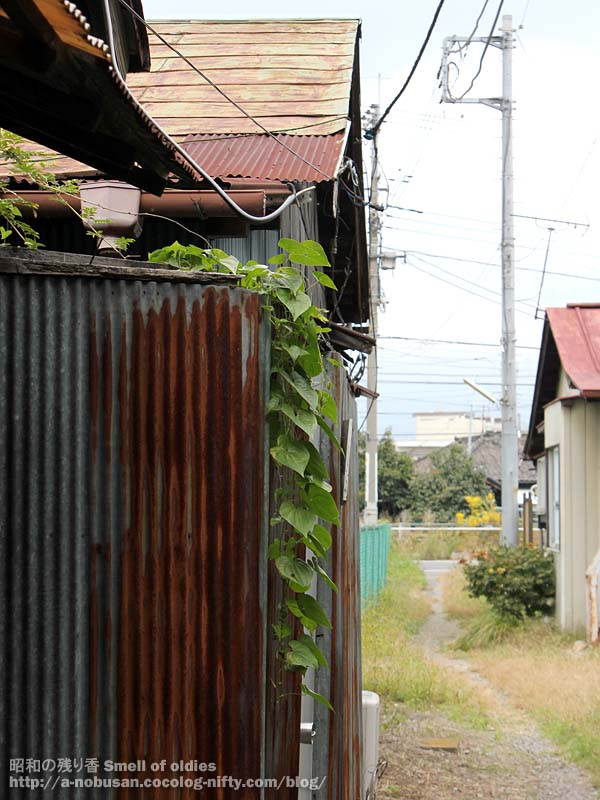 Img_0241_dilapidated_house