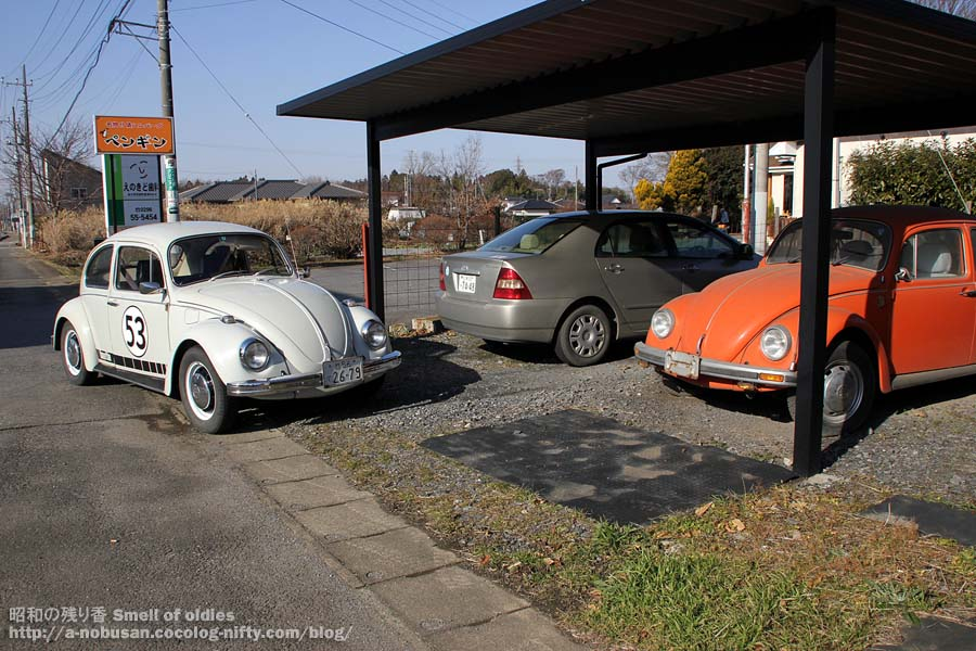 Img_0065_makabe_orange_beetle