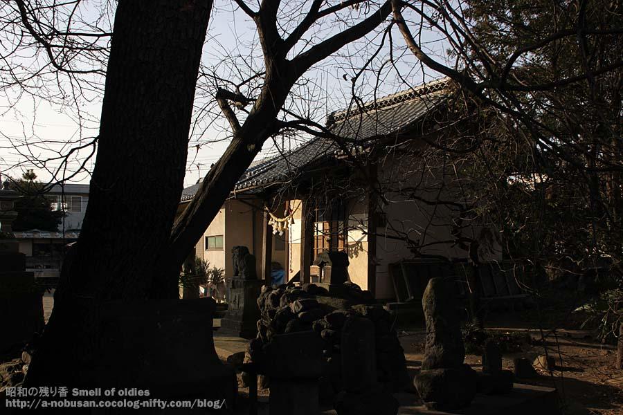 Img_0259_itsukushimajinjya_maeb