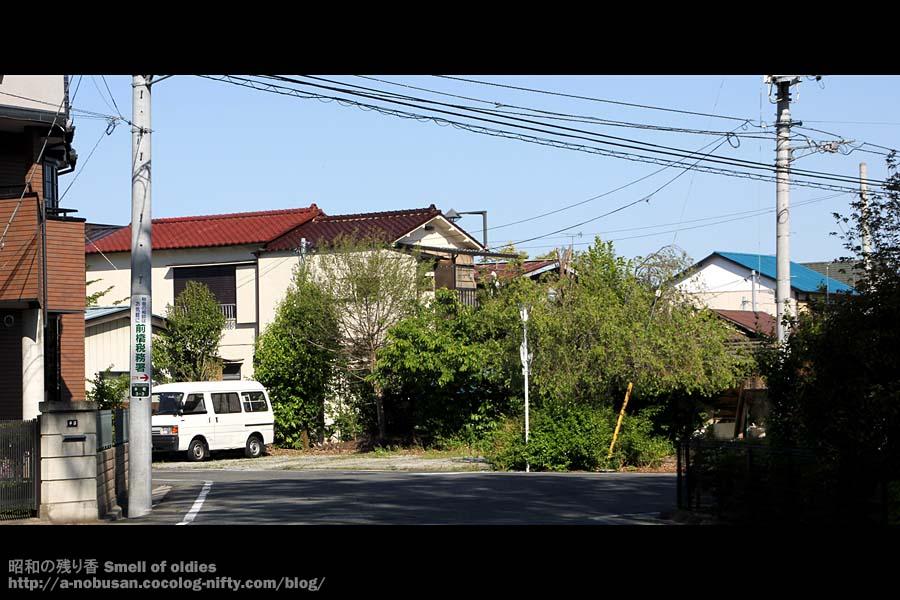 Img_0236_hidamari_kigi